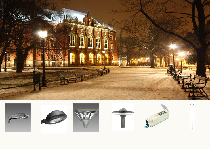 acid 80w led street lantern With Stainless Steel Pipelines