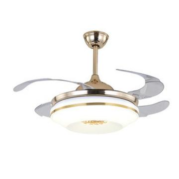 Special design home decorative fancy high quaility hidden blades lighting ceiling fans