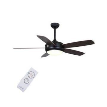 Factory direct sale attactive unique black decorative ceiling fans price