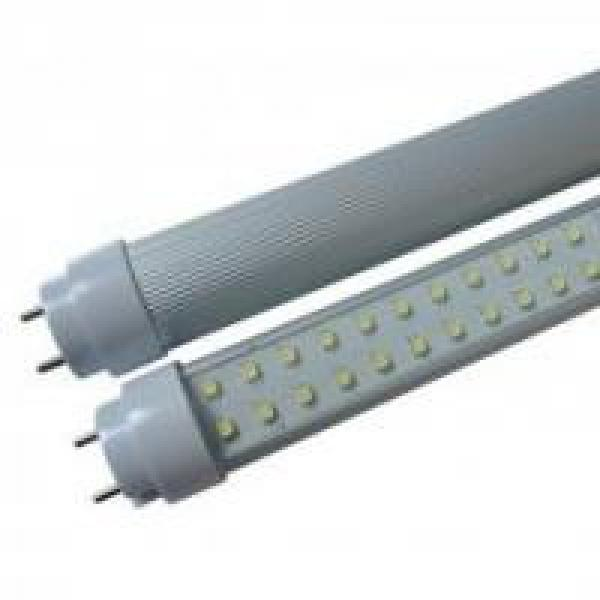"""Led T8 LightTube Frosted Cover 36"""" T8 LightTube Frosted Cover 24"""" Standard Performance T-8 Fixtures"""