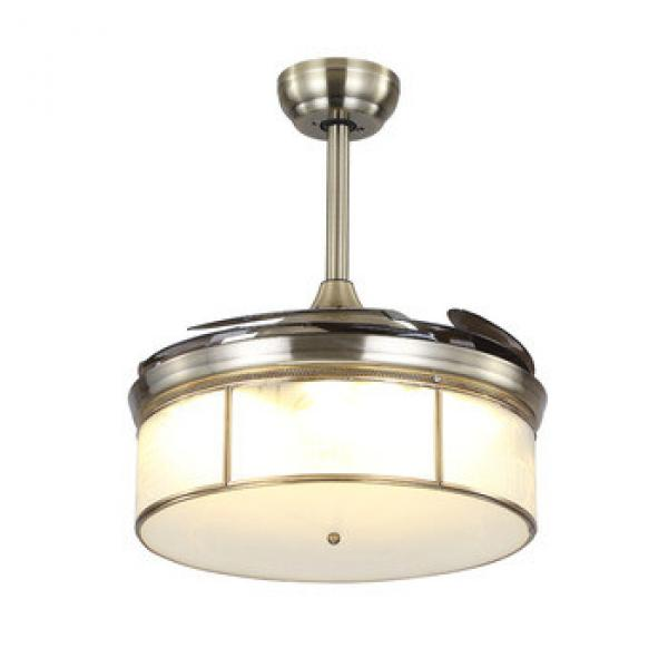 Best selling factory price high quality hidden blades ceiling fan with led light